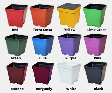2019 colored pots with names