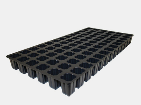 725622C PROPAGATION TRAYS