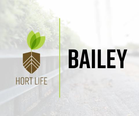Hort Life Chronicles: Bailey
