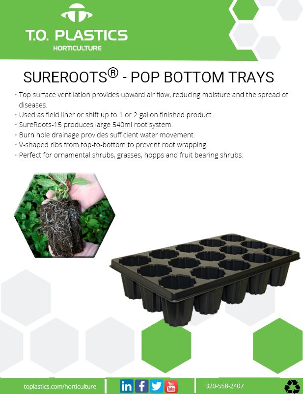Sureroots Pop Bottom Trays